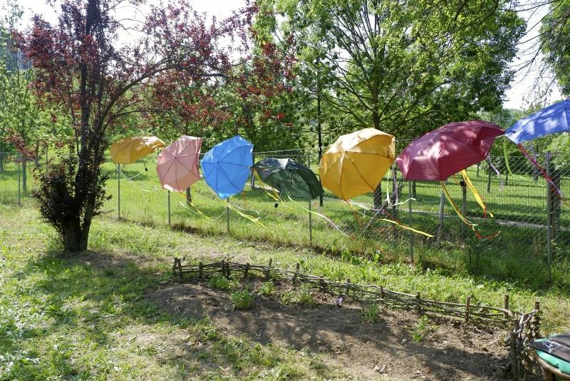 Felice Battaglia: i colori e i sapori di un orto in città